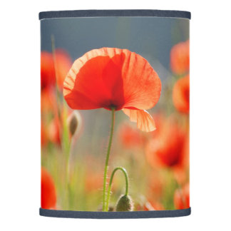 Red Poppies Poppy Flowers  Blue Sky Lamp Shade