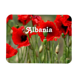 Red Poppies Rectangular Magnets