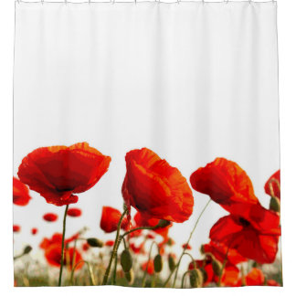 Lovely Red Poppies Shower Curtain