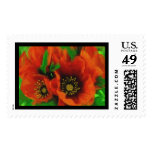 Red Poppies Stamps