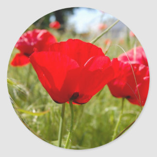 RED POPPIES STICKERS FOR ENVELOPES