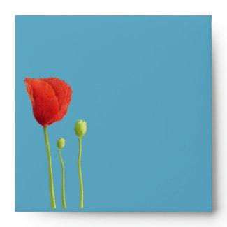 Red Poppy aqua inside stripes Invitation Envelope envelope