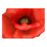 Red Poppy Business Card Templates