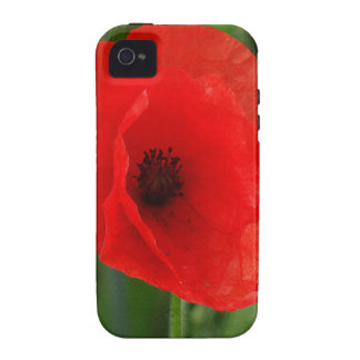 Red poppy iPhone 4/4S covers