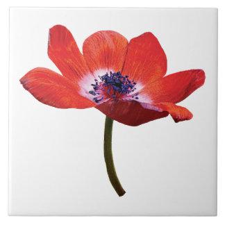 Red Poppy Closeup Ceramic Tile