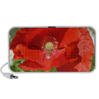 Red Poppy Doodle Speaker