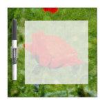 Red Poppy Dry Erase Board