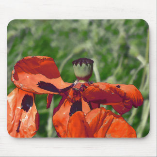 Red poppy faded mouse pad