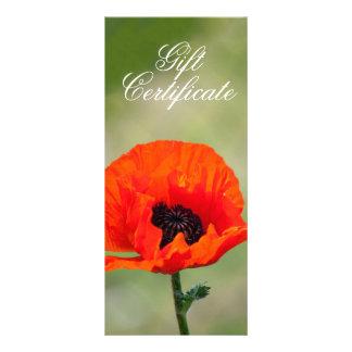 Red Poppy Flower Gift Certificate Custom Rack Card