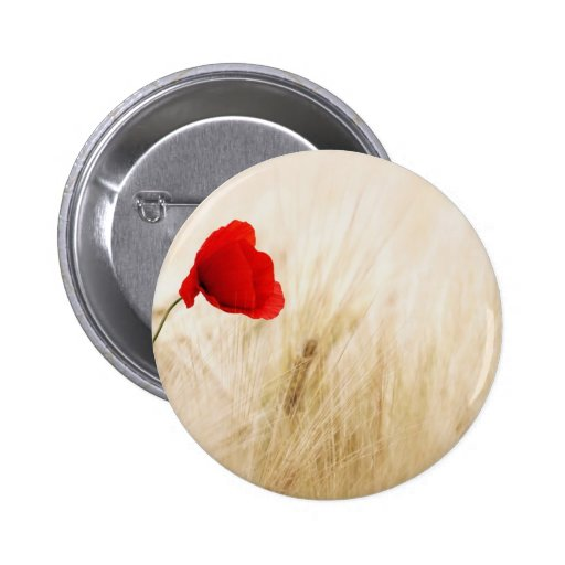 Red Poppy Flower in Field of Ripe Cereals Pinback Buttons