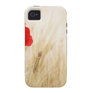 Red Poppy Flower in Field of Ripe Cereals Case-Mate iPhone 4 Cases