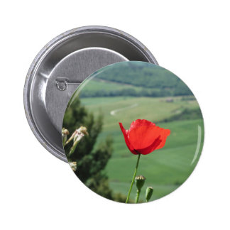 Red poppy flower in Tuscany countryside Button
