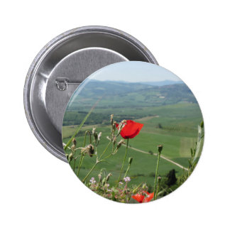 Red poppy flower in Tuscany countryside Pinback Button