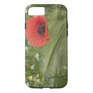 Red poppy flower, Tuscany, Italy iPhone 8/7 Case