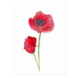 Red Poppy Flower Watercolor Botanical Art Postcard
