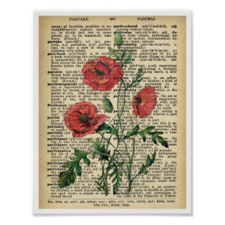 Red Poppy Flowers Art Print Poster Vintage Page