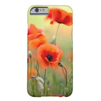 Red Poppy Flowers Barely There iPhone 6 Case