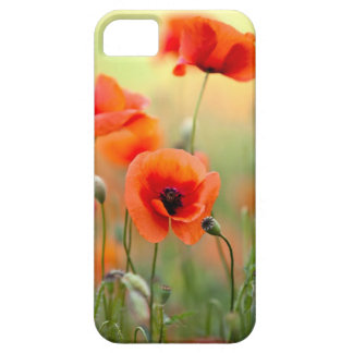 Red Poppy Flowers iPhone 5 Cover