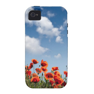 Red Poppy Flowers Vibe iPhone 4 Cases