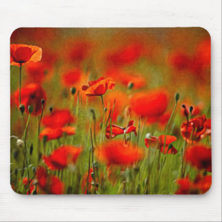 Red Poppy Flowers Mousepads