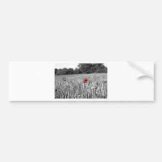 red poppy in a black and white field bumper stickers
