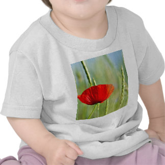 Red poppy in the corn field. t-shirt