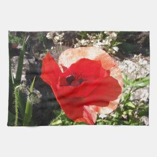 Red Poppy Kitchen Towels