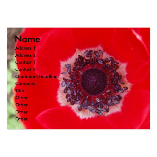 Red Poppy Large Business Card