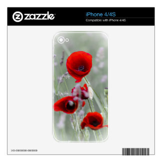 Red Poppy On Misty Background iPhone 4 Decal