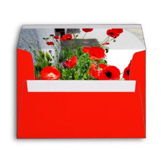 Red poppy photo envelope