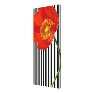 Red Poppy Simplicity Canvas Print