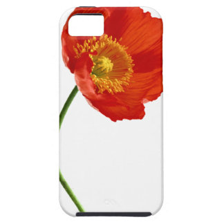 Red Poppy Simplicity iPhone 5 Cover