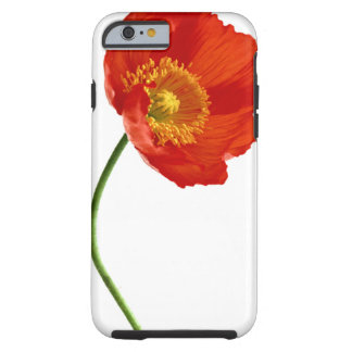 Red Poppy Simplicity iPhone 6 Case