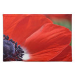Red Poppy Spring Floral Place Mats