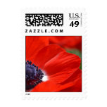 Red Poppy Spring Floral Postage