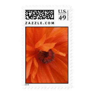 Red Poppy Stamp