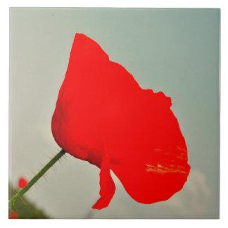 Red poppy tile