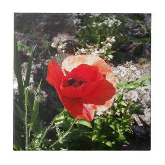 World war one poppy gifts