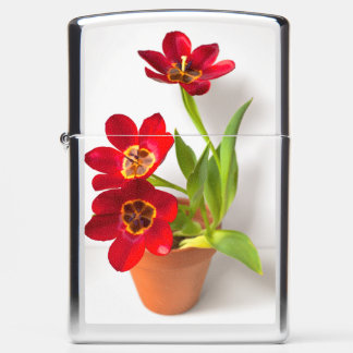Red Potted Tulips Floral Picture Cut Out Zippo Lighter