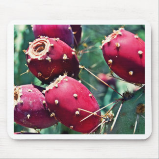 Red Prickly Pear Mouse Pad
