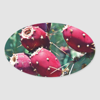 Red Prickly Pear Oval Stickers