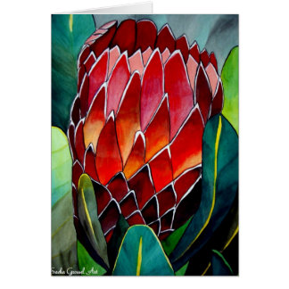 Red Protea flower original watercolour art Card