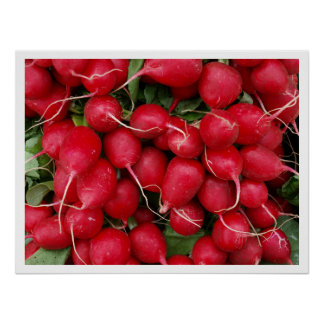 Red Radishes Poster