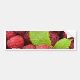 Red Raspberries Car Bumper Sticker