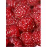 Red Raspberries close up photograph Photo Sculptures