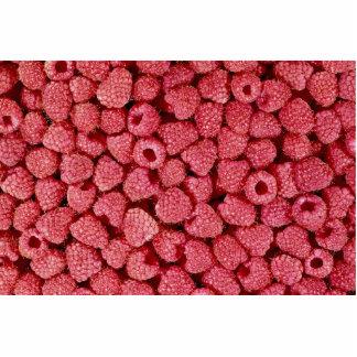 Red raspberries Photo Photo Cutout