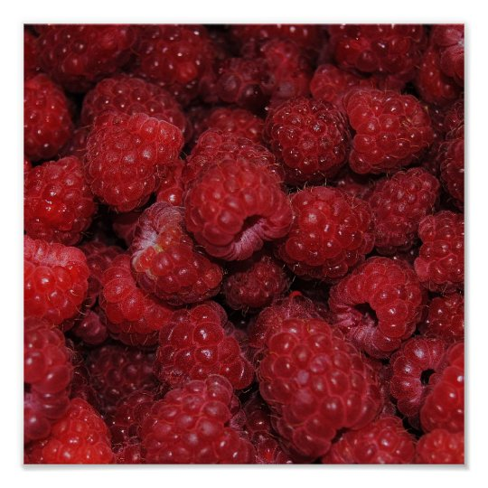 Red Raspberries Print