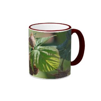 Red Raspberry Mug