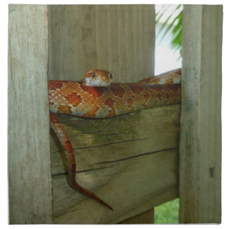 red rat snake in fence head up cloth napkin