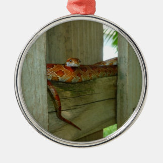 red rat snake in fence head up christmas ornament